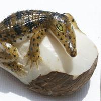 Cocodrilo de tagua