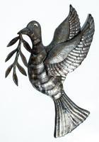 Paloma del paz