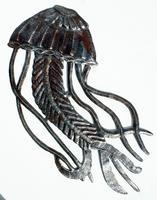 Medusa del mar