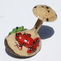 Las ranas y hongo