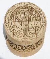 Caja con cobra