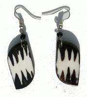 Aretes zebra