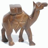 Camello pequeno