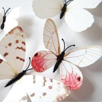 Set de 12 mariposas blancas